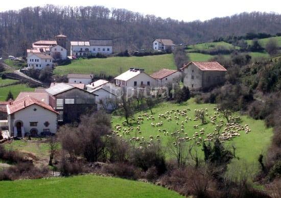Lintzoain
