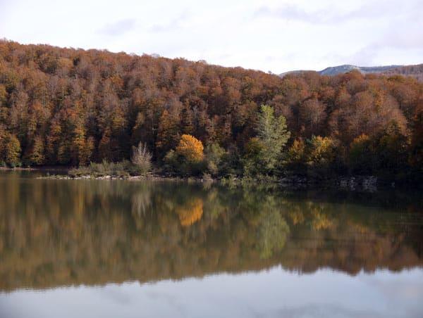 Sendero local Los Paraísos Erlan en la Selva de Irati